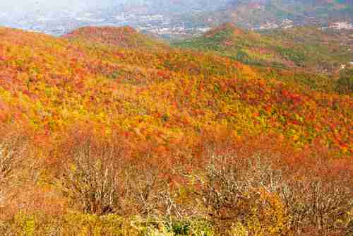 Autumn landscape view of the Blue Ridge mountain range
